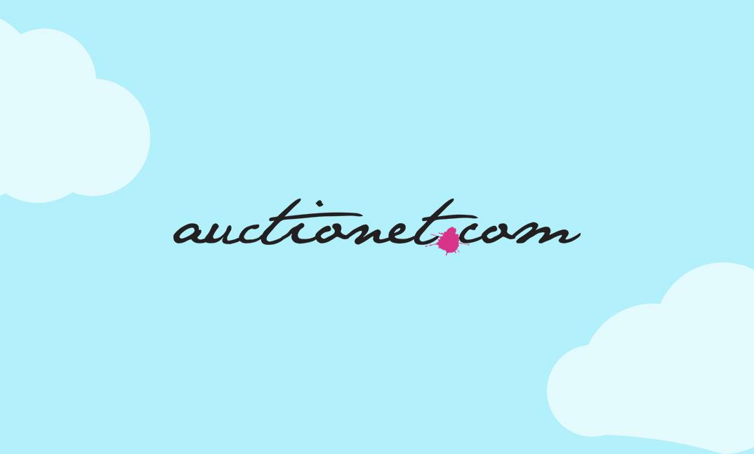 Auctionet_case